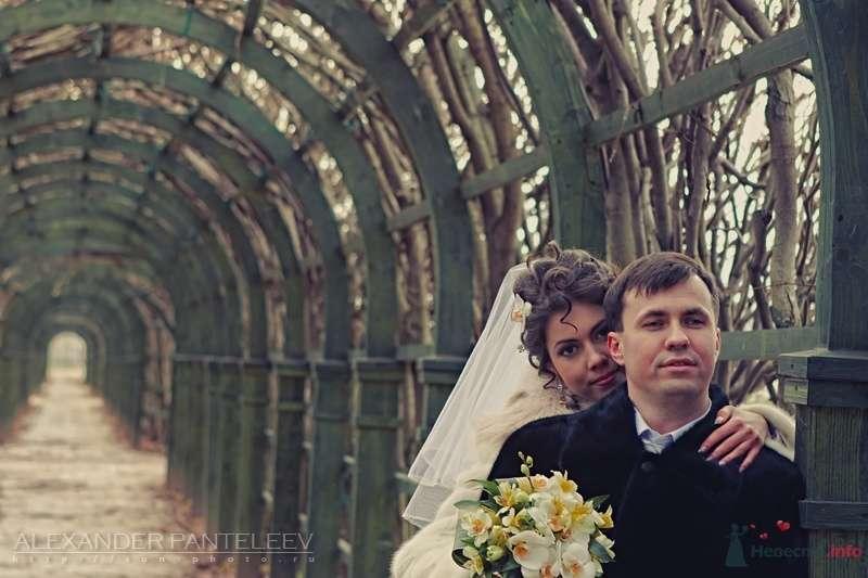 -*- - фото 50445 Свадебный фотограф Пантелеев Александр