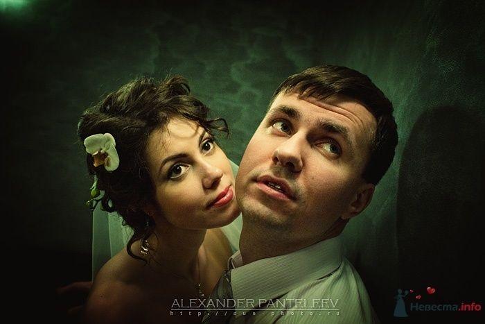 -*- - фото 51325 Свадебный фотограф Пантелеев Александр