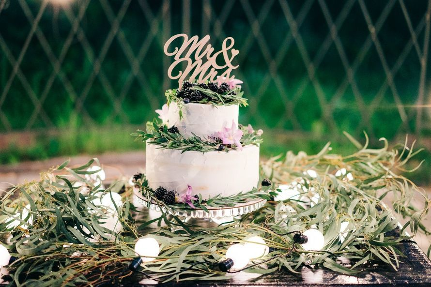 Фото 6743600 в коллекции Нежная свадьба Макса и Лизы под открытым небом! - Павел Артёмов - ведущий