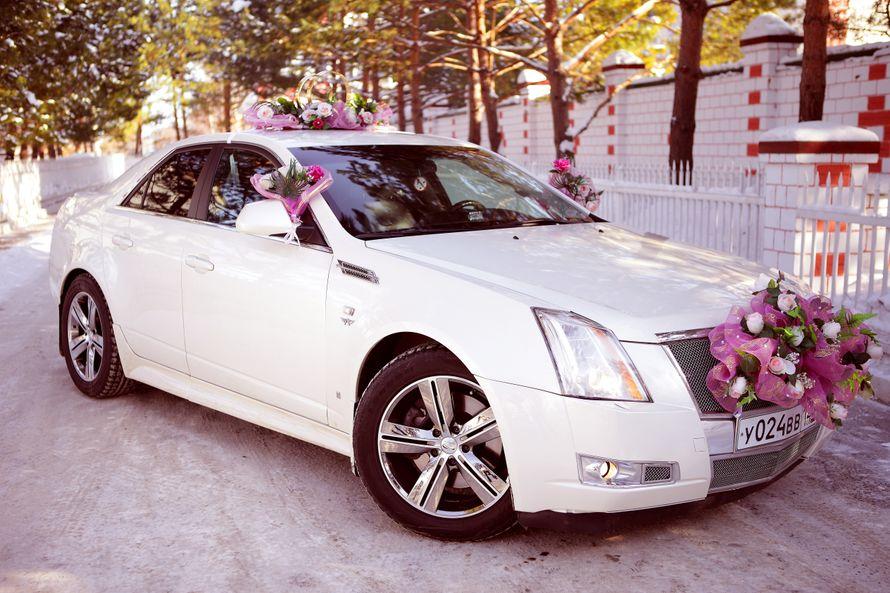 Фото 4115961 в коллекции свадебный автомобиль Cadillac CTS - Cadillac CTS - аренда авто на свадьбу