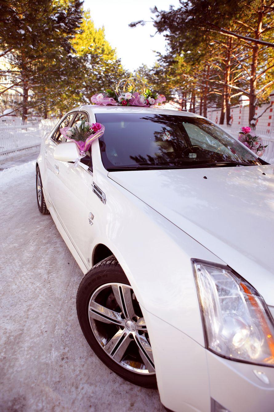 Фото 4115965 в коллекции свадебный автомобиль Cadillac CTS - Cadillac CTS - аренда авто на свадьбу