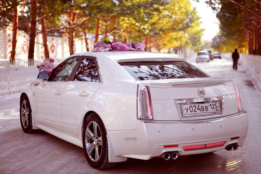 Фото 4115977 в коллекции свадебный автомобиль Cadillac CTS - Cadillac CTS - аренда авто на свадьбу