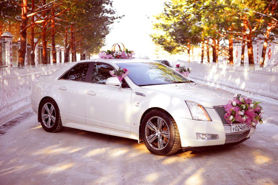 Фото 4115979 в коллекции свадебный автомобиль Cadillac CTS - Cadillac CTS - аренда авто на свадьбу