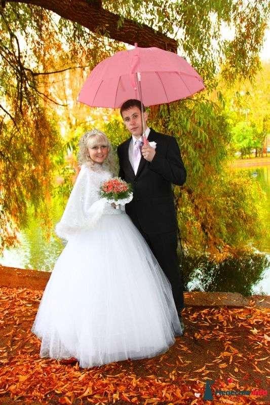 Фото 347013 в коллекции Свадебные - Фотограф