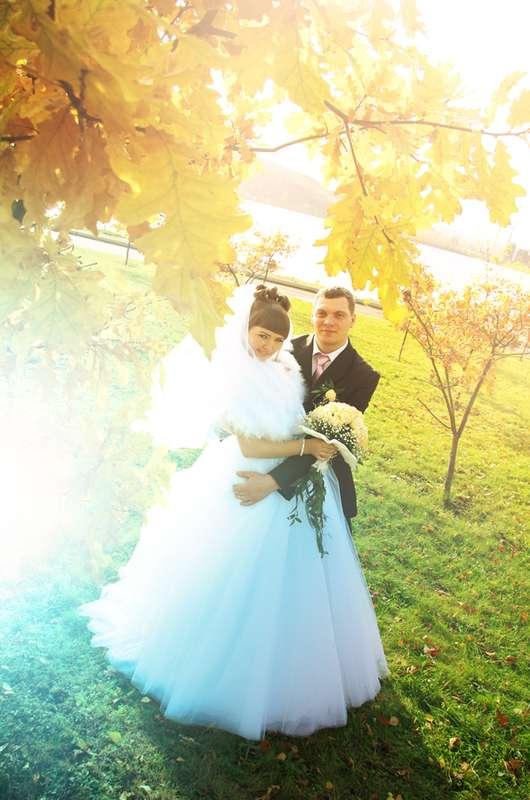 Фото 548040 в коллекции Свадьбы - Фотограф Александр Тимофеев