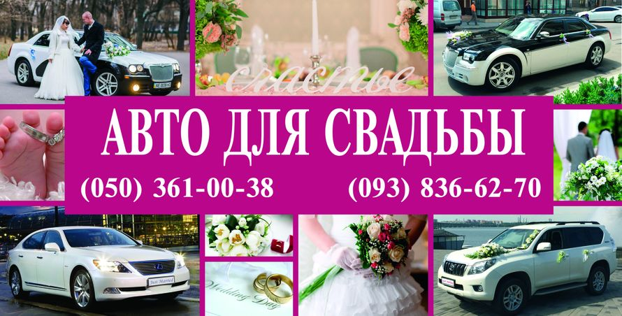автомобили для свадьбы - фото 4474783 Авто в аренду bi-bip