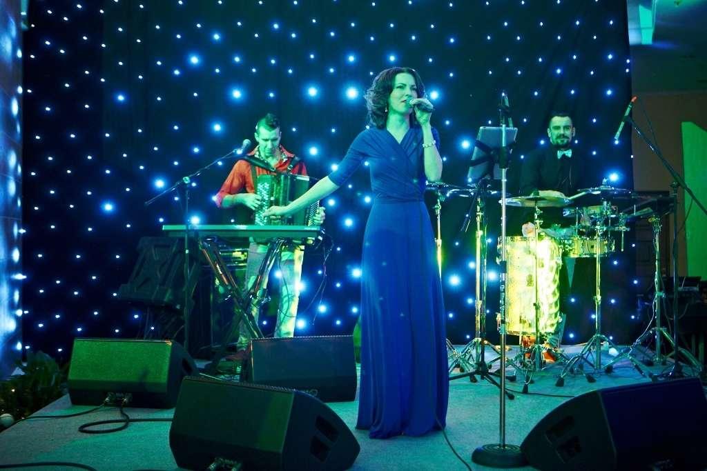 Профессиональное сценическое оборудование - бэклайн. Звездное небо - фото 4476977 Music Show