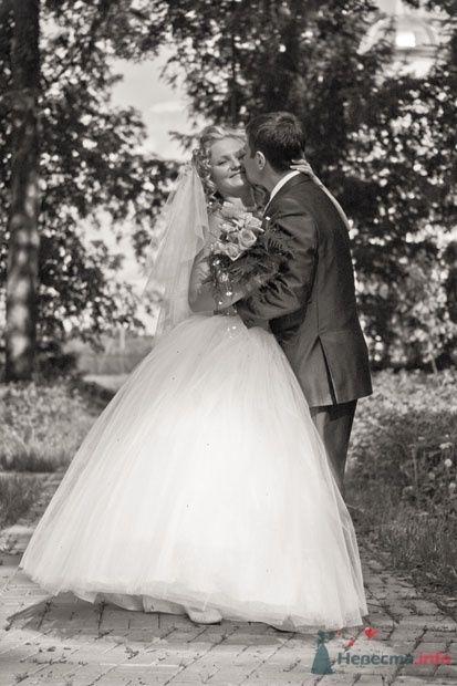 Фото 24377 в коллекции Свадебное фото (прогулка)