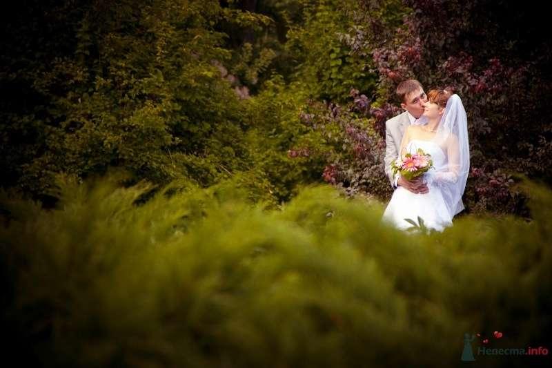 Жених и невеста стоят, прислонившись друг к другу, возле густых деревьев - фото 41258 Lexandra