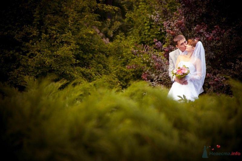 Жених и невеста стоят, прислонившись друг к другу, возле густых