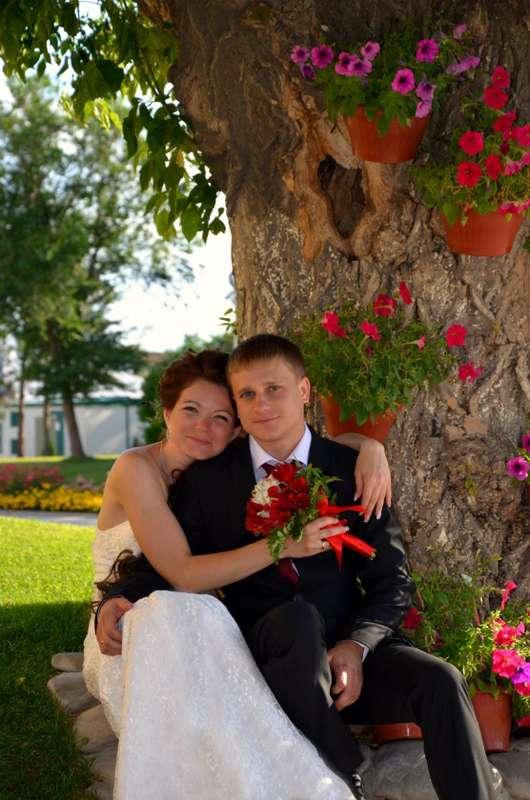 Фото 10650482 в коллекции Портфолио - Центр свадебных услуг Роменских