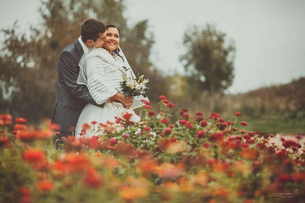 Фото 1398869 в коллекции Свадьбы 2013 - Фотограф Владимир Донченко