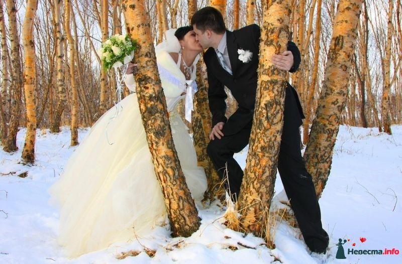 Поздравления на день розовой свадьбы итогам подсчета