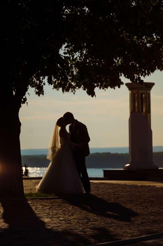 Фото 5017375 в коллекции Свадебный альбом - Фотограф Надежда Бирюкова