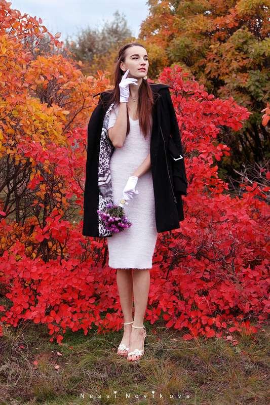 Яркая осень - фото 5055349 Фотограф Nessi Novaya