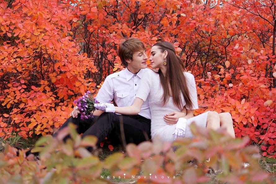 Фото 5055663 в коллекции Яркая осень - Фотограф Nessi Novaya