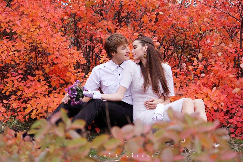 Фото 5065403 в коллекции Яркая осень - Фотограф Nessi Novaya