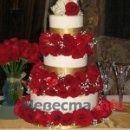 Фото 27569 в коллекции торты
