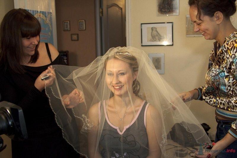 Фото 46372 в коллекции наша свадьба