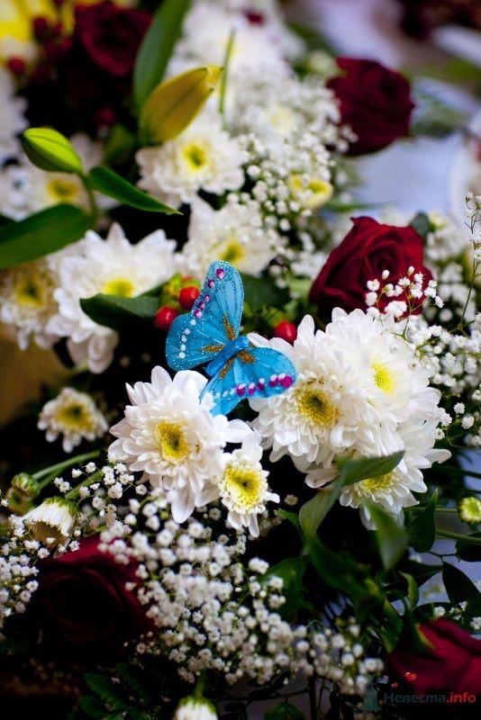 Фото 46382 в коллекции наша свадьба - женька87