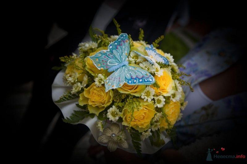Фото 46383 в коллекции наша свадьба - женька87