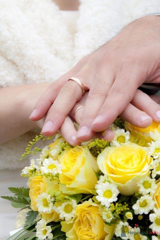 Фото 52207 в коллекции наша свадьба - женька87