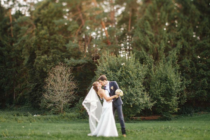 Свадьба Александры и Ильи 26.08.2014 - фото 5193047 Дачный отель Pine river
