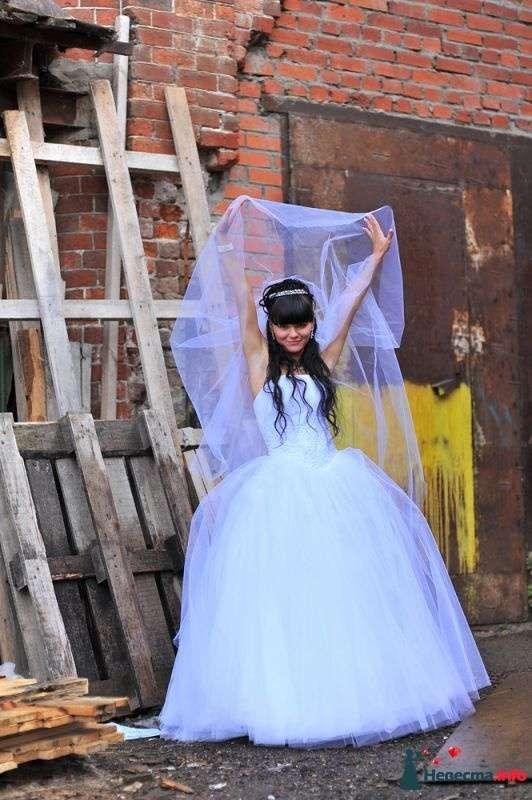 Фото 352975 в коллекции Мои фотографии - Свадебный фотограф Юлия Панфилова