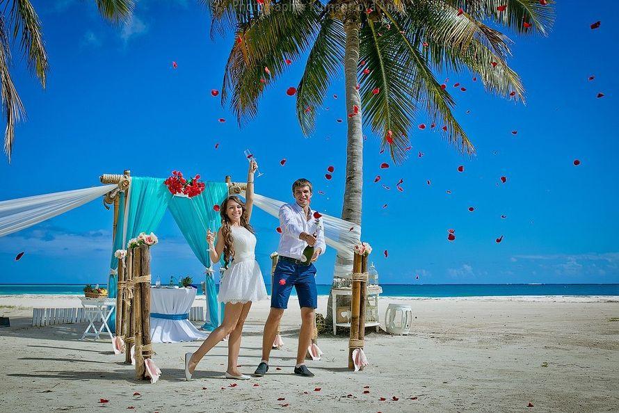 часть показателей вакансии фотографа в доминикане зимняя открытка пожеланием