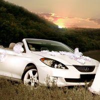 Прокат свадебного кабриолета 89288160774
