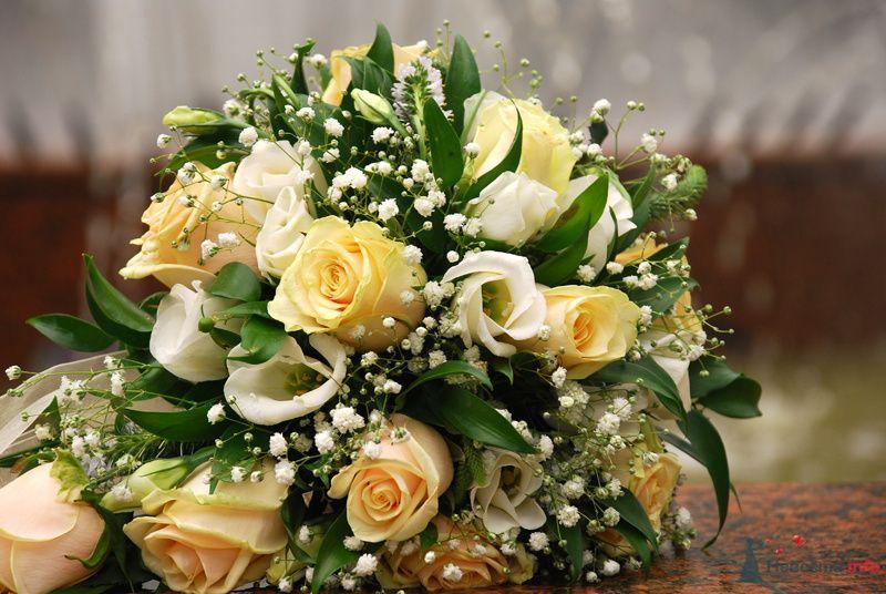 Фото1 - фото 75890 Невеста01