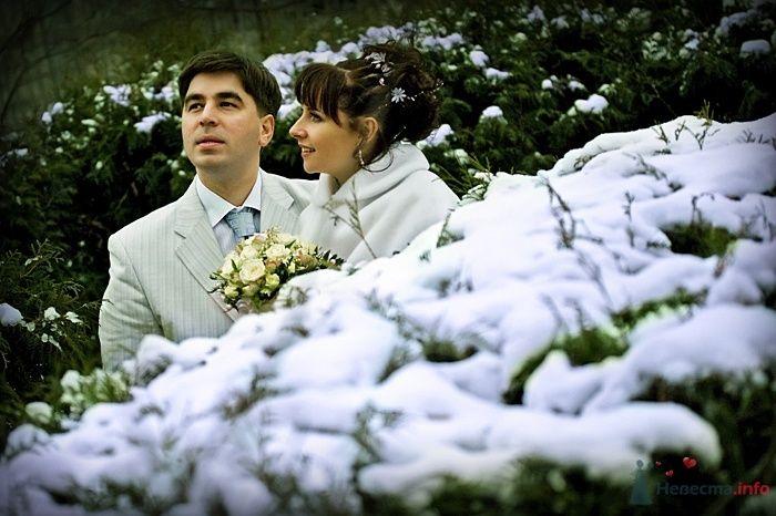 Жених и невеста стоят, прислонившись друг к другу, в заснеженном лесу