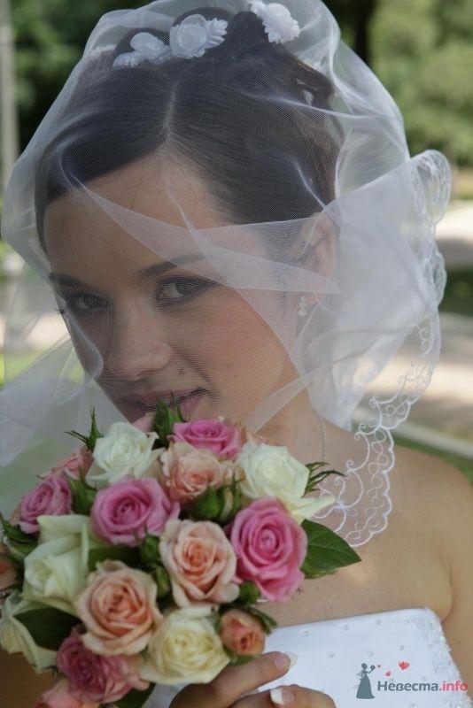 Фото 61956 в коллекции Анна и Олег - magnolia7