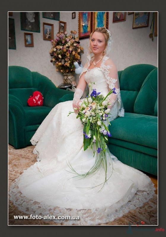 Фото 25725 в коллекции Свадебный фотограф-профессионал Александр Тужанский - fotoalex