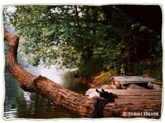 Фото 5548388 в коллекции Самобытный хутор для свадеб - Деревня-музей Забродье