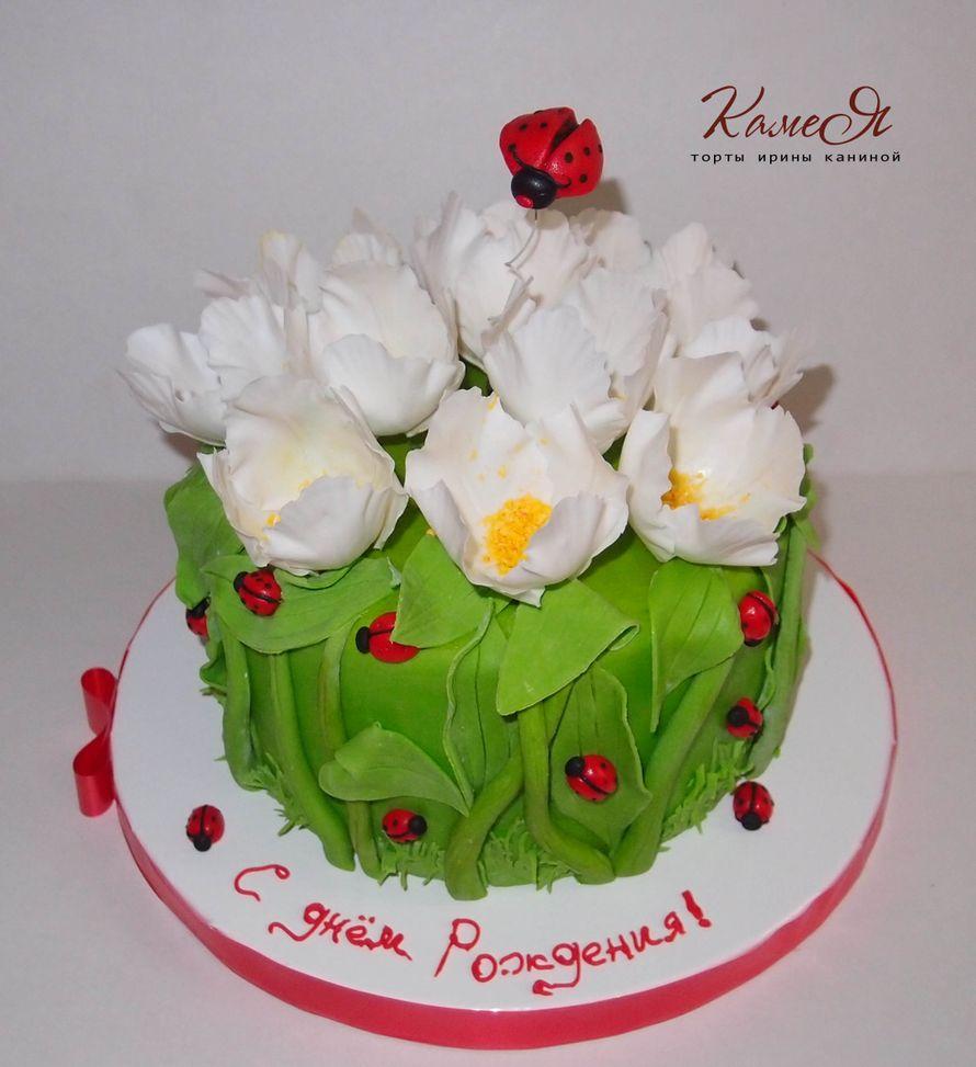 """Фото 990929 в коллекции Разные торты - """"Камея"""" - торты Ирины Каниной"""