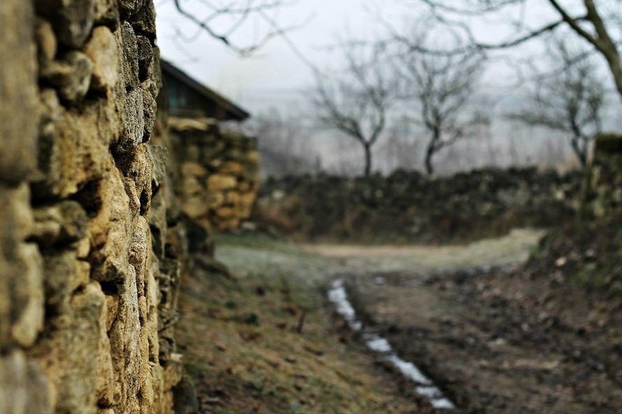 Фото 5702185 в коллекции пейзаж - Фотограф Кристина