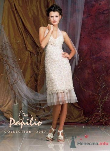 Фото 4159 в коллекции Вечерние платья - leshechka