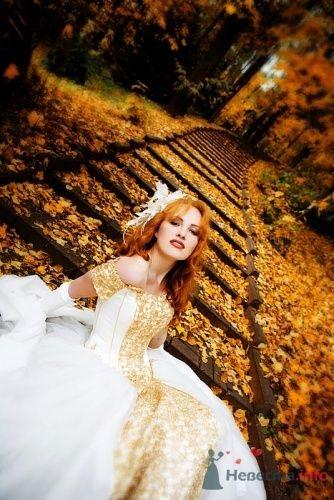 Фото 7446 в коллекции Свадебная фотография