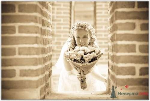 Фото 14133 в коллекции Свадебная фотография - leshechka