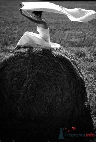 Фото 19528 в коллекции Мои фотографии - leshechka