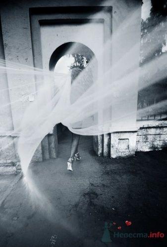 Фото 19530 в коллекции Мои фотографии - leshechka