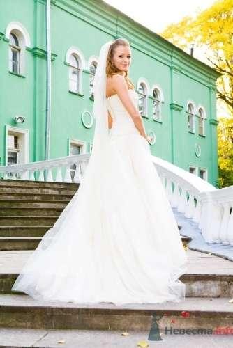 Невеста спиной в белом пышном свадебном платье и с фатой. - фото 689 Алла Иванова - свадебный фотограф studio14