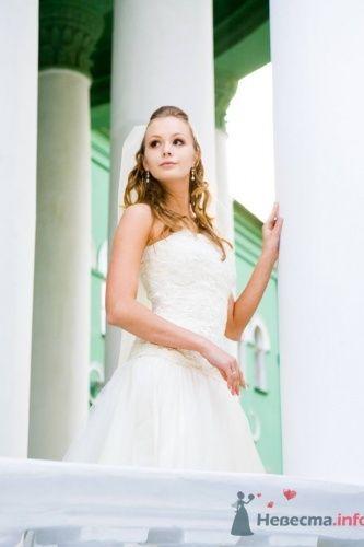Нежный образ невесты в пышном свадебном платье и в фате. - фото 690 Алла Иванова - свадебный фотограф studio14