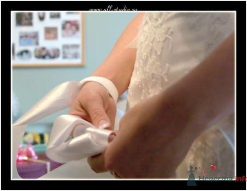 Фото 646 в коллекции Свадьба Паши и Насти - Студия фото и видеосъемки Aliya Pavrose