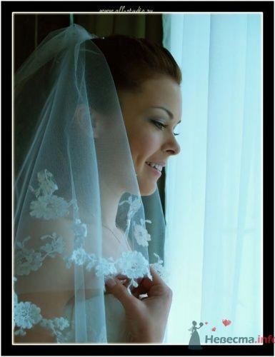 Фото 648 в коллекции Свадьба Паши и Насти - Студия фото и видеосъемки Aliya Pavrose