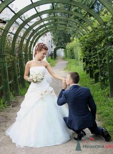 свадьба Ольги и Александра - фото 718 Невеста01