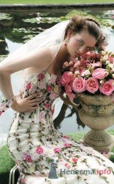 Свадебное платье Atelier Aimee от ПЛЮМАЖ - фото 1146 Плюмаж - бутик выходного платья и костюма