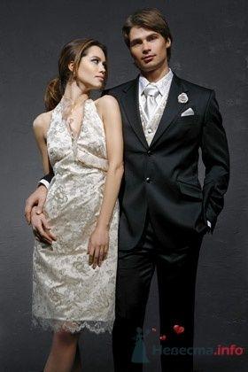 Свадебное платье Domo Adami - фото 30470 Плюмаж - бутик выходного платья и костюма