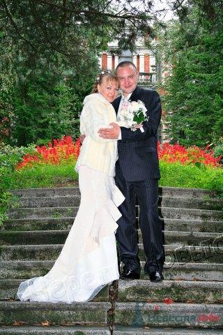 """Фотография жениха и невесты в парке - фото 1234 Фотостудия """"Fotolord"""""""